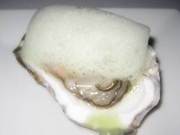 No this isn't a rabid oyster, it's an oyster served with cucumber foam.